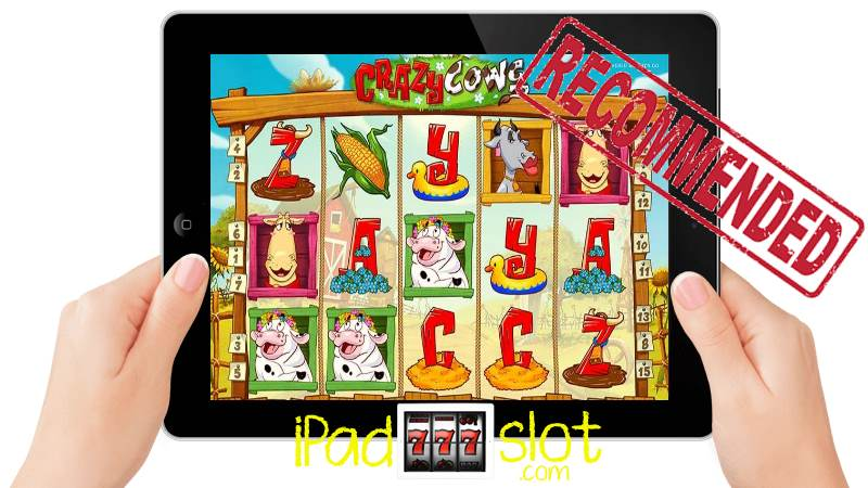 Crazy Cows iPad Slot Game Free Preview
