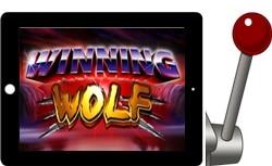 Winning Wolf Free iPad Slots