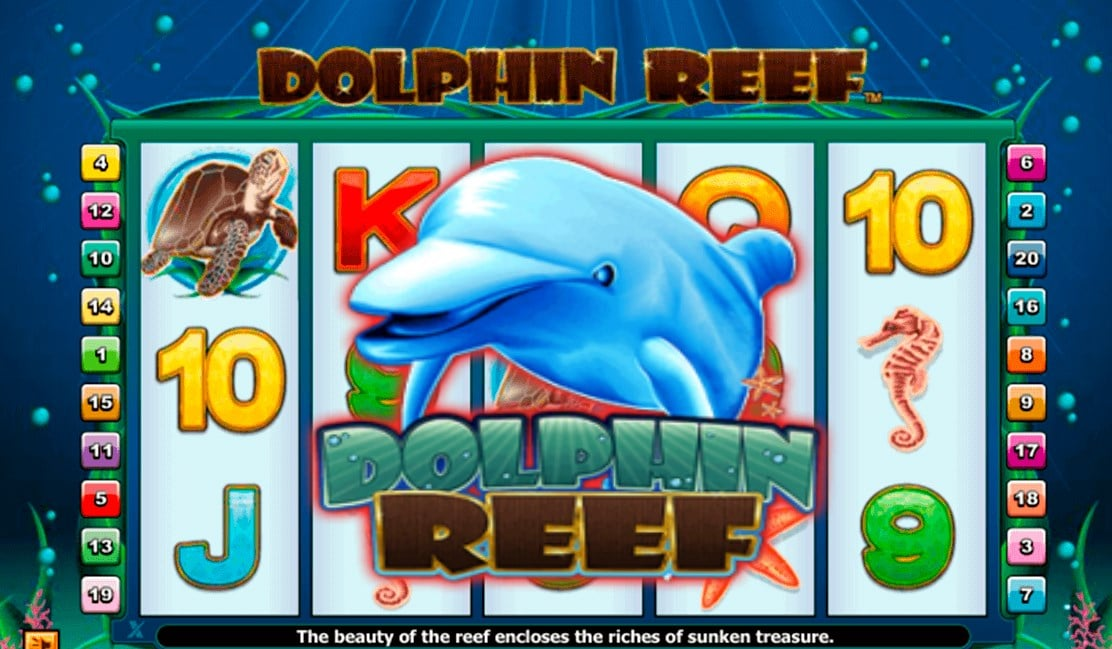 Free Slots Games Dolphin Reef