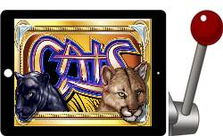 Cats free IGT ipad slots