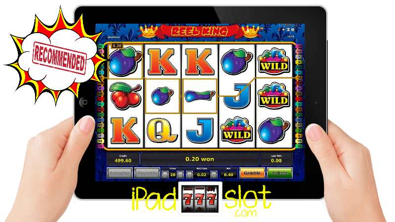 Reel King Novomatic Slots Free App Guide