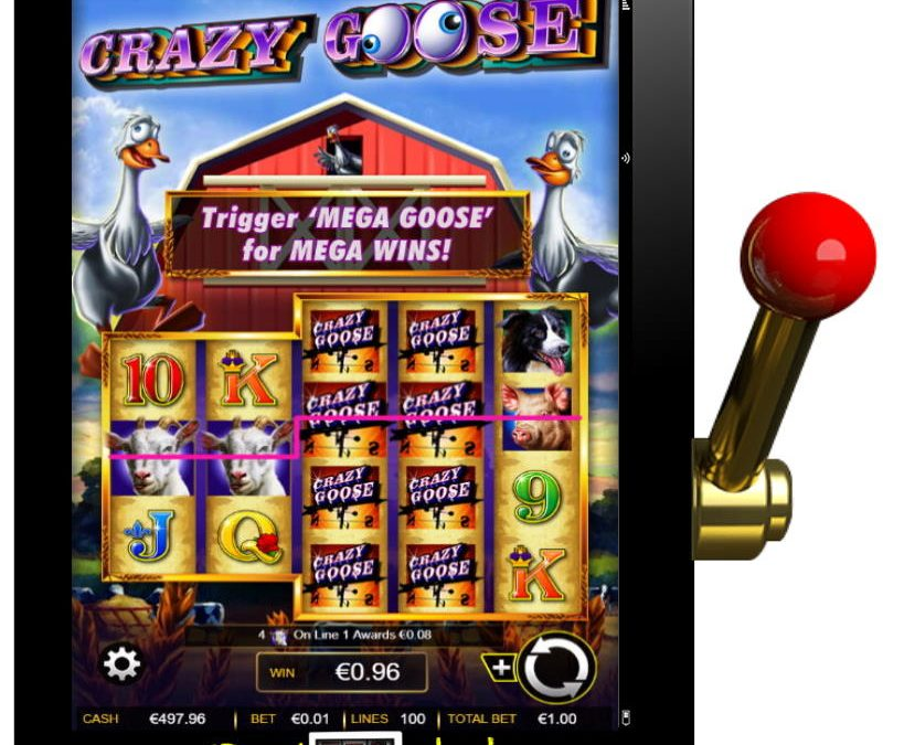 Crazy Goose Free IGT Slot Review